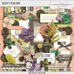DSI_BeautyInBloom-preview-web