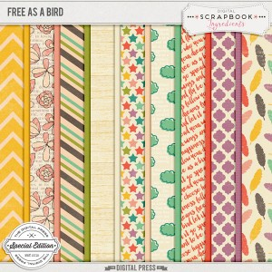 DSI_FreeAsABird_preview-papers-web