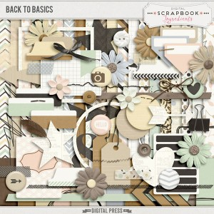 DSI_BackToBasics_preview-web
