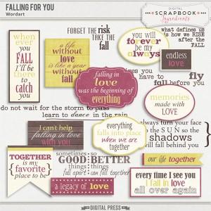 DSI_FallingForYou-preview-wordart-web