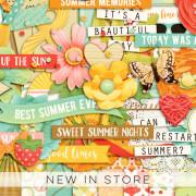 New - Summer Fades Away - Digital Scrapbook Ingredients