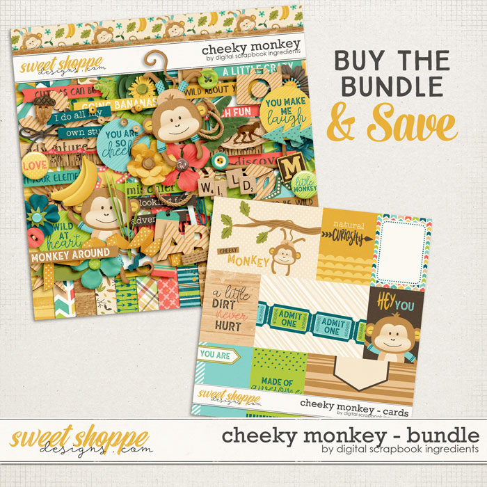 DSI_CheekyMonkey_preview-bundle-web