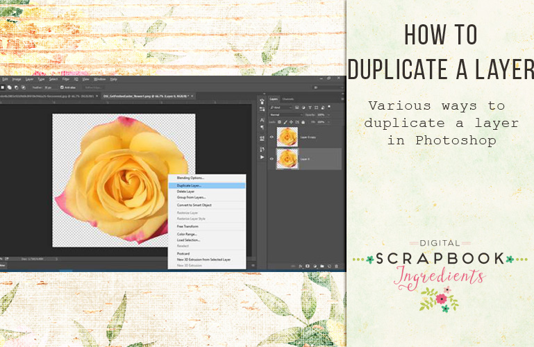 How to duplicate a layer