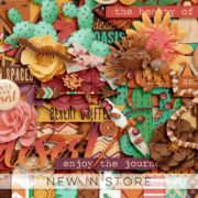 New - Our Trip In The Desert - Digital Scrapbook Ingredients
