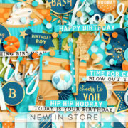 New - Birthday Boy - Digital Scrapbook Ingredients